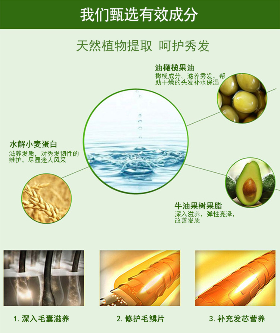 橄榄丝滑营养护发素